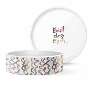 """Best Dog Ever"" Squiggle Multi Color Ceramic Bowl"